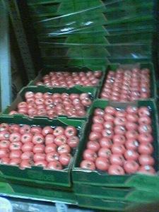 Fresh Minnesota Tomatoes